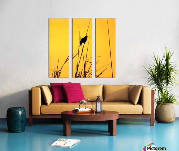 Song of First Light  Split Canvas print