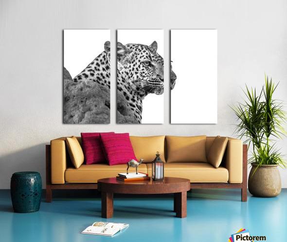 Leopard - B&W Split Canvas print