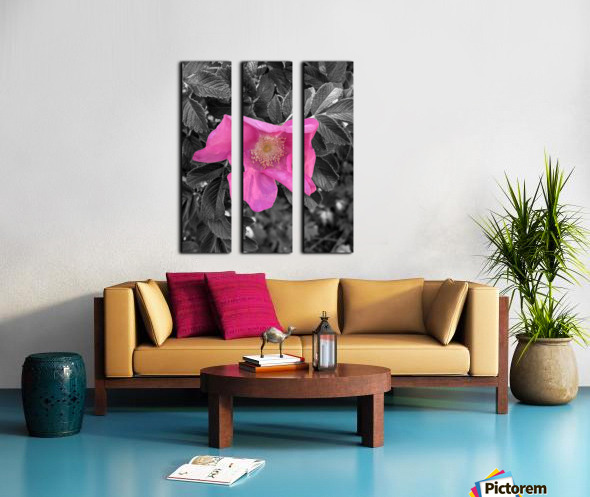 BlackPinkLove Split Canvas print