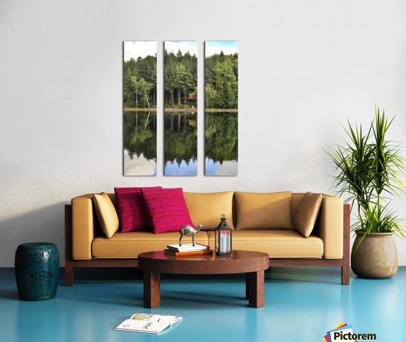 The Reflection Split Canvas print