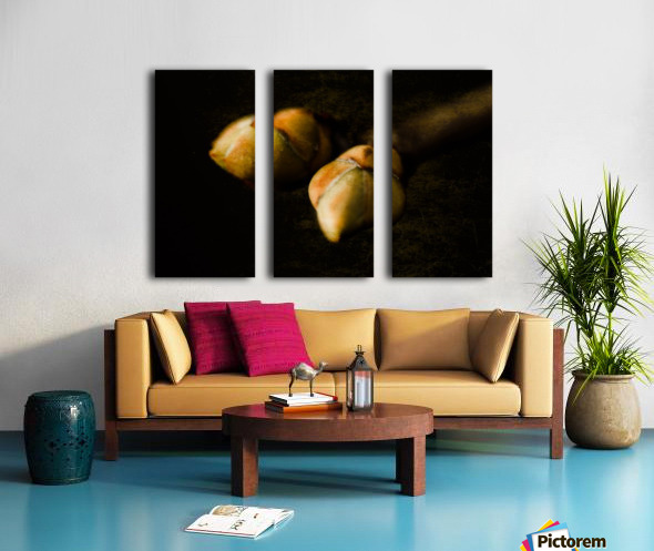 Buds Split Canvas print