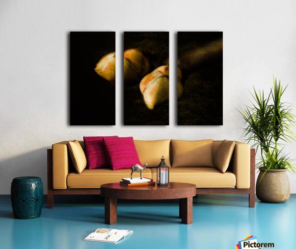 Buds Split Canvas print
