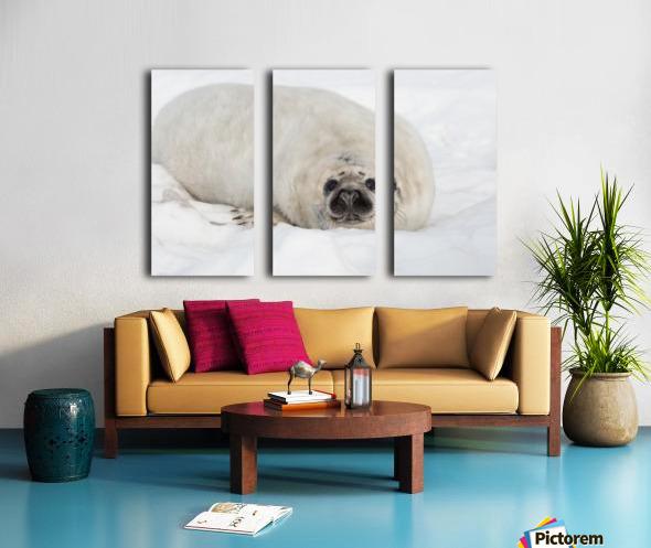 Hello Split Canvas print