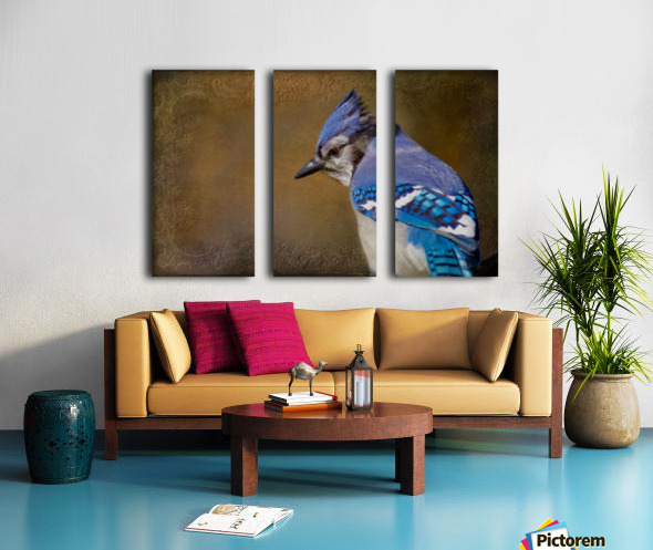 Blue Jay with texture Split Canvas print
