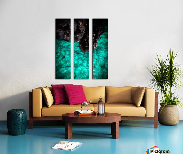 80CF134A 30F5 435E AE47 E42B13691760 Split Canvas print