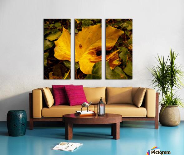 BEF07FDB 2FCF 424A 8A1F 5DBA1711F3B9 Split Canvas print
