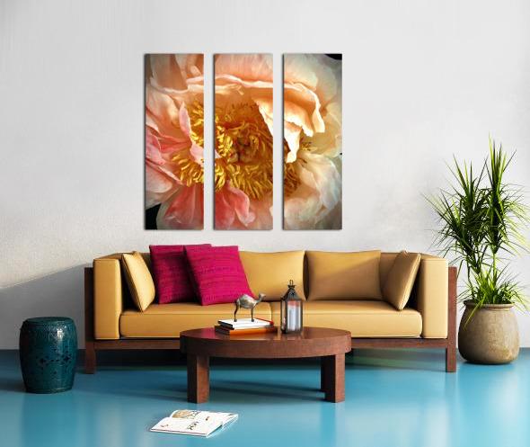 2BC8AE79 9B6B 4D45 8C3B 941CC622F439 Split Canvas print