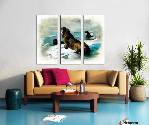 Walrus Illustration Split Canvas print