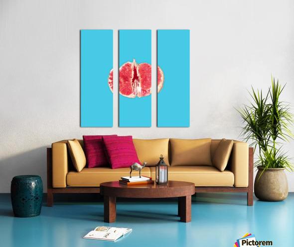 Sanguine Split Canvas print