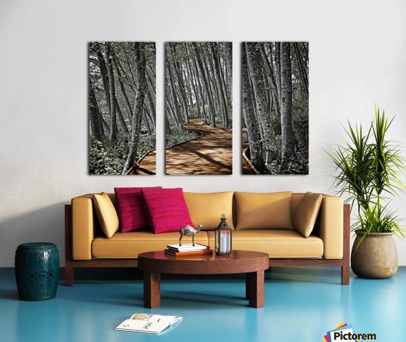 Boardwalk in the Woods Split Canvas print