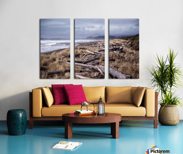 Beached Driftlogs Split Canvas print