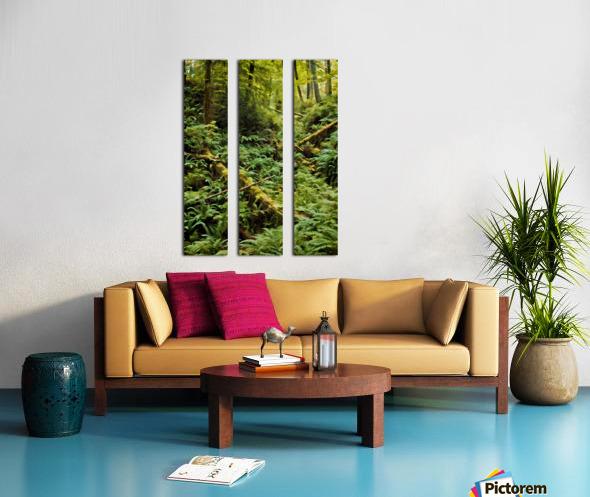 Fern Hollow Split Canvas print