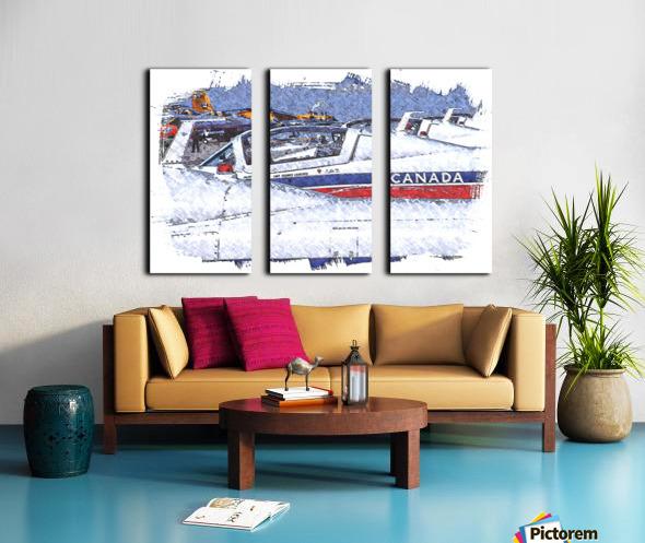 Canadian Snowbirds Split Canvas print