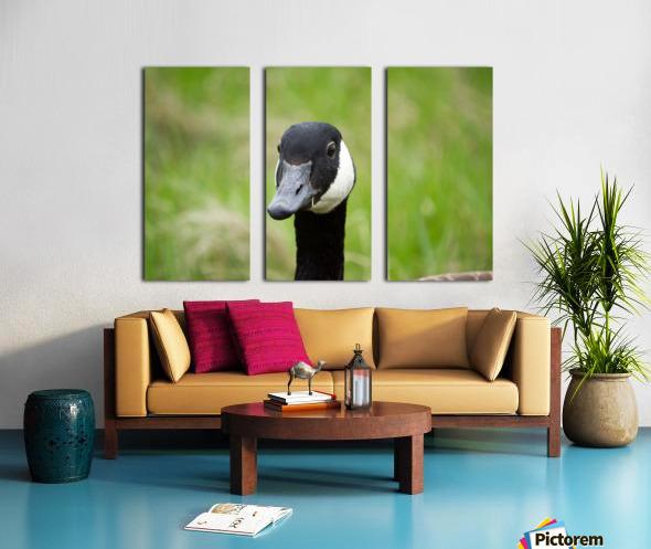 Toothpick Goose Split Canvas print