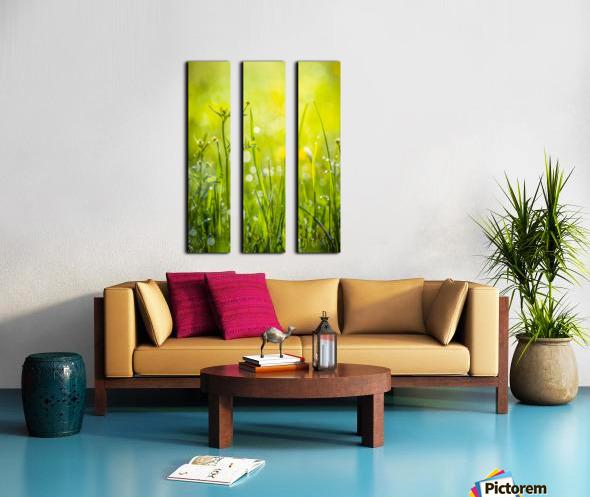 Summer meadow Split Canvas print