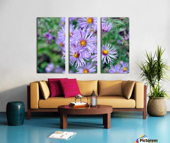 0056 Split Canvas print
