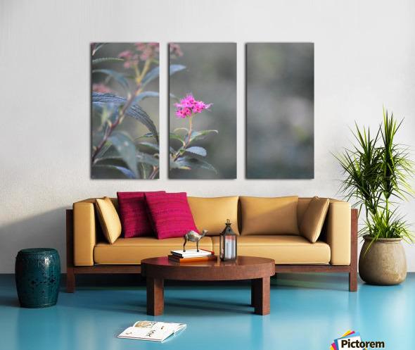2965 Split Canvas print