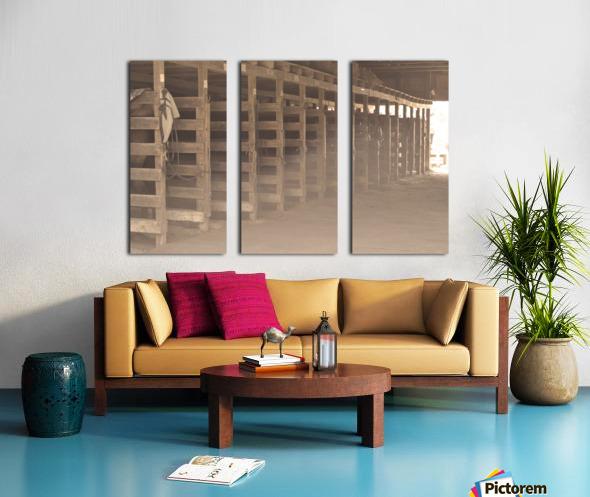 0060 Split Canvas print