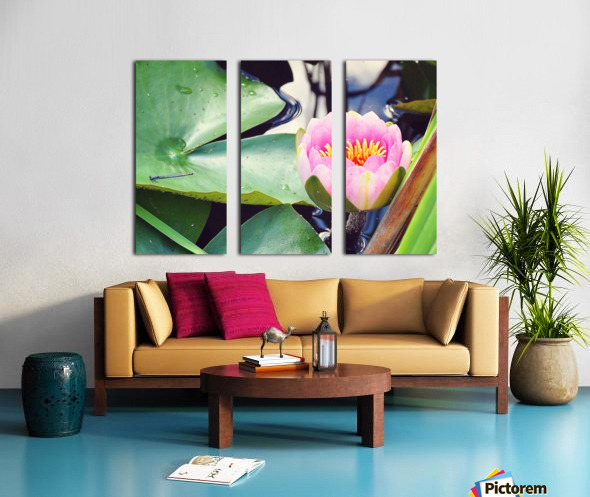 Dragonfly And Lily Split Canvas print