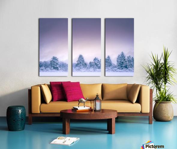 Winter landscape Split Canvas print