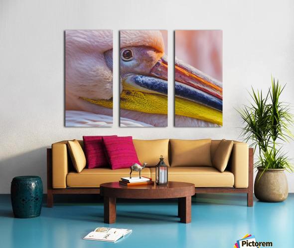 Pelican portrait Split Canvas print