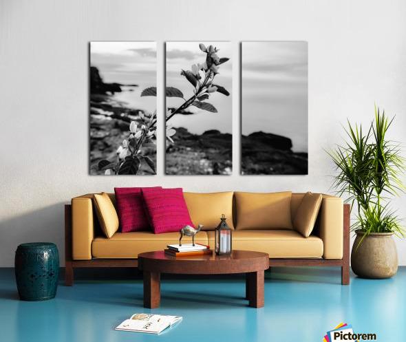 Elegance  Split Canvas print