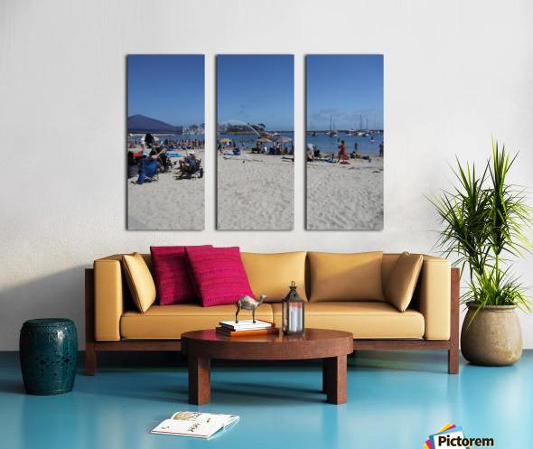 inbound2146489861934710842 Split Canvas print