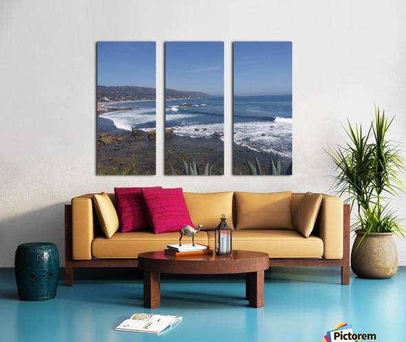 inbound3700373622876741529 Split Canvas print