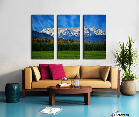 Comox Glacier in Early Spring Split Canvas print