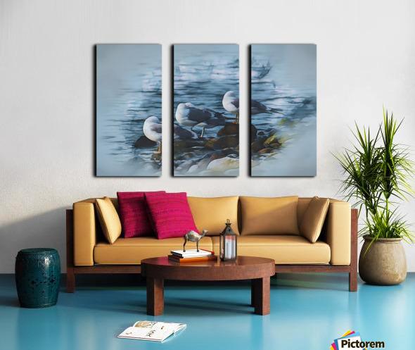 Preening Gulls Split Canvas print