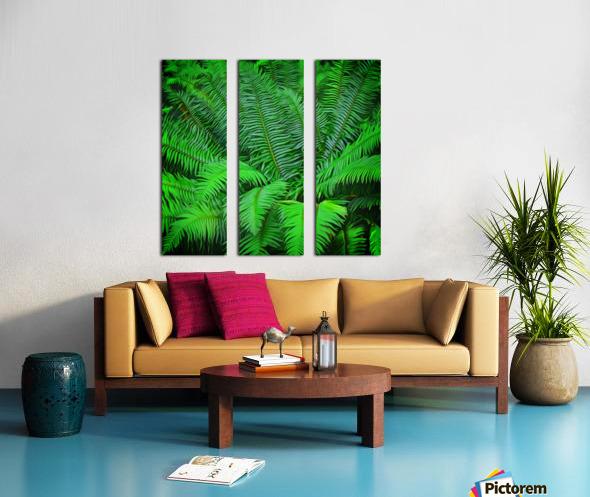 Just Ferns Split Canvas print