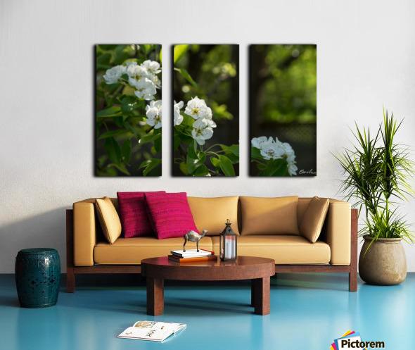 Poirier en fleurs 1  Toile Multi-Panneaux