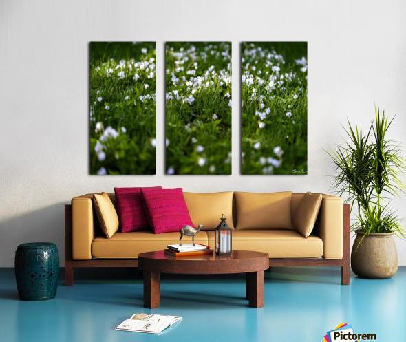 Confettis au jardin 3 Split Canvas print