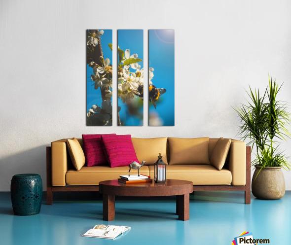 Bumble Cherry Split Canvas print