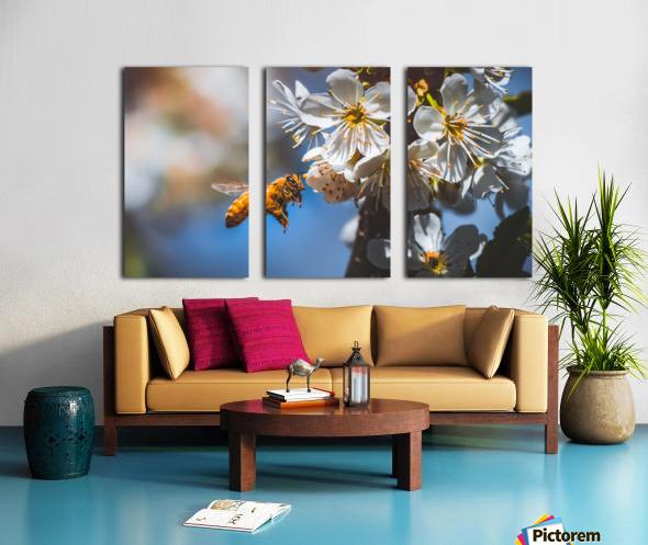 Blossom & The Bee Split Canvas print