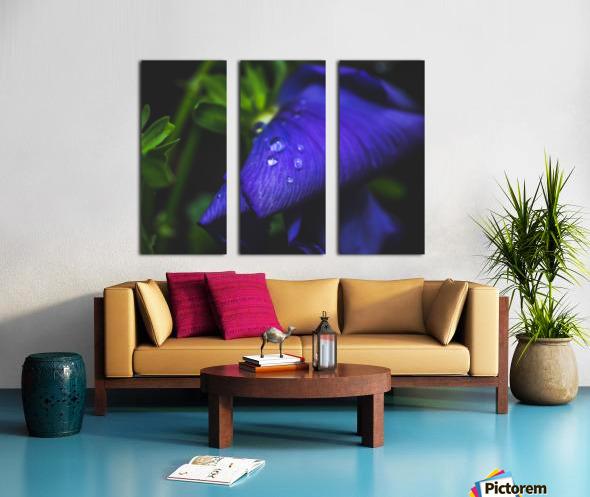 Drops With Blue Split Canvas print