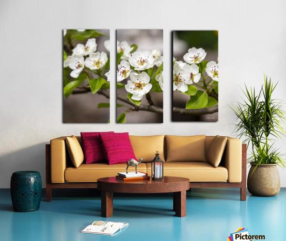 Poirier en fleurs 2 Split Canvas print