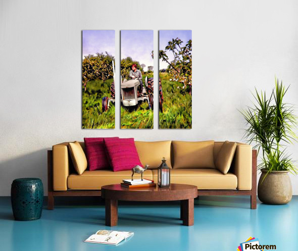 One Man And His Fergie Tractor Split Canvas print