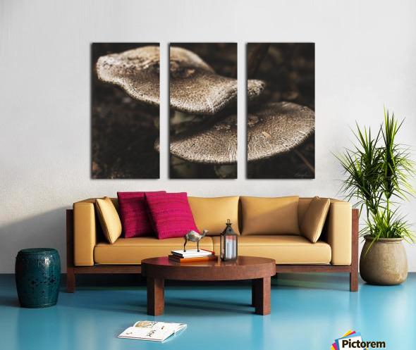 Petit couple au sous bois - Little couple in the underwoods Split Canvas print