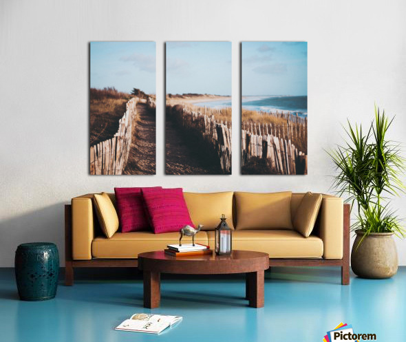 IMG 1018 Split Canvas print
