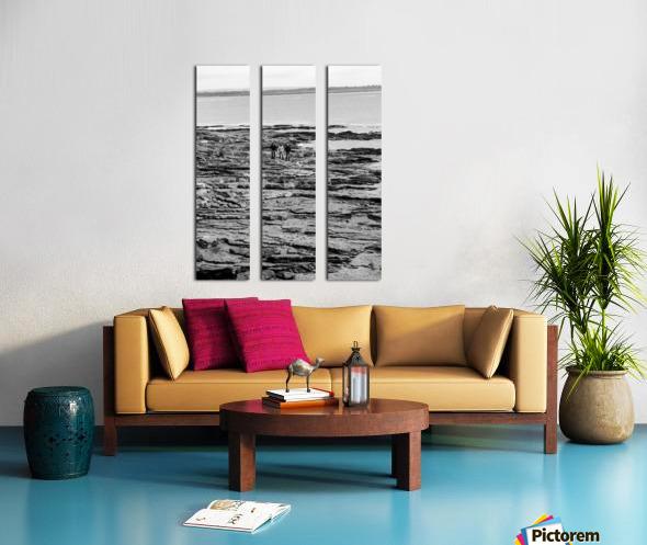 Over Rocks Split Canvas print