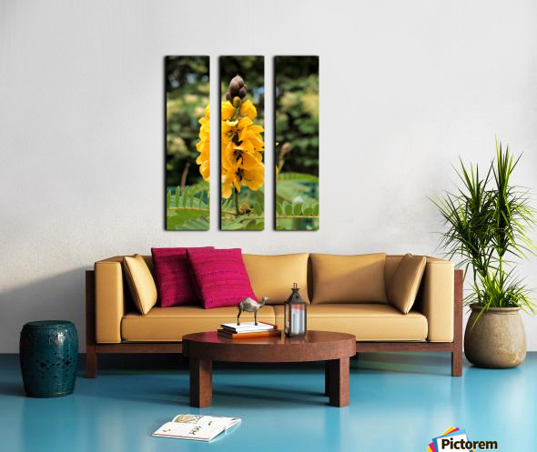 Yellow Split Canvas print