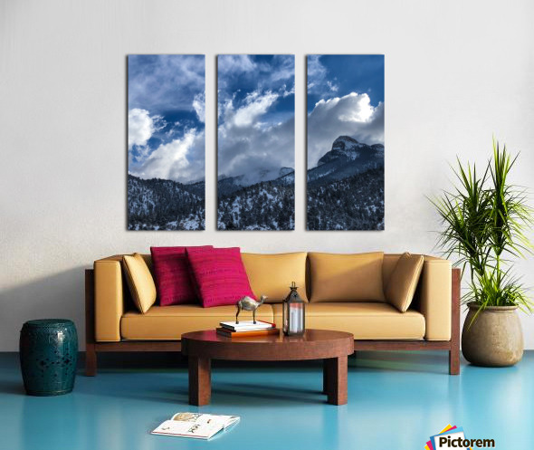 0E75E165 AA2A 4128 A768 000EEE1F6DC2 Split Canvas print