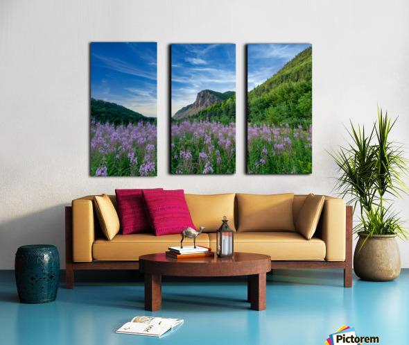 Fireweed at La Grand Falaise Split Canvas print