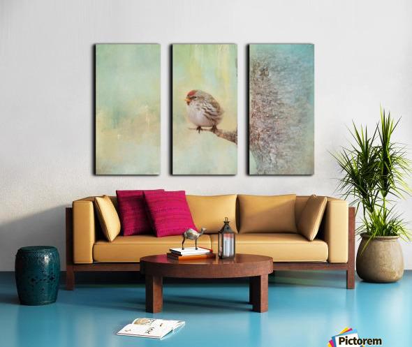 Common Redpoll Split Canvas print