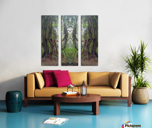 Grandmother Tree Split Canvas print