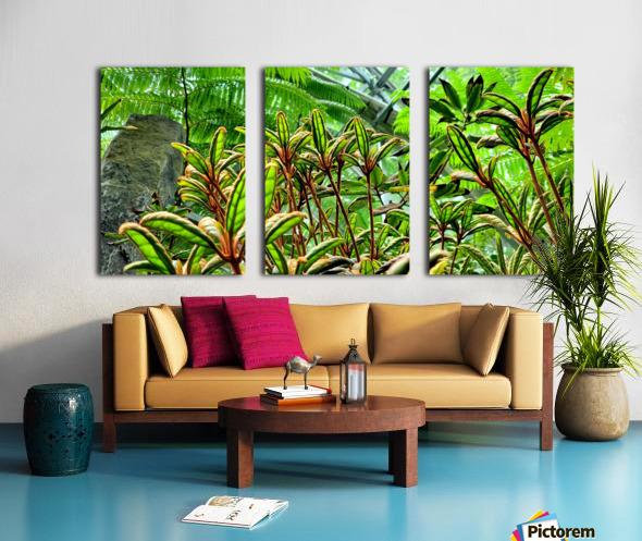 The Greenhouse Split Canvas print