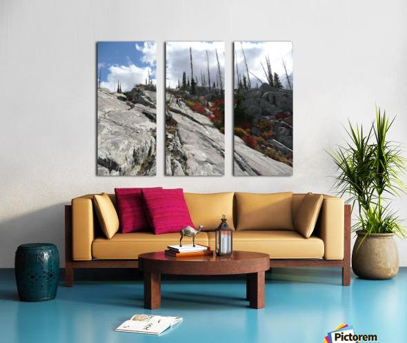 Easy Climb to Grouse Mountain Split Canvas print