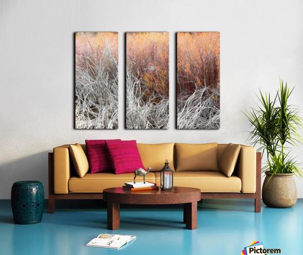 Willows Split Canvas print