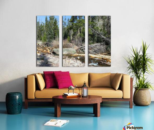 Upper Provo River Split Canvas print
